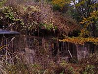 愛用者の家
